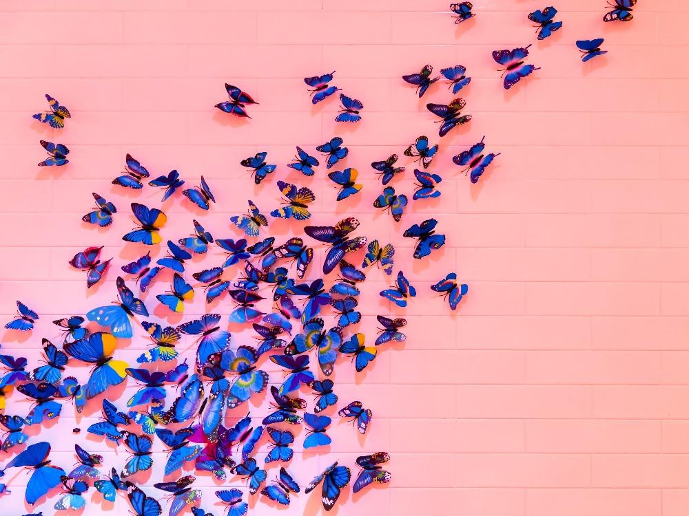 libri come universi, Orlando Furioso, Italo Calvino racconta Orlando Furioso, il piacere della lettura, Astolfo sulla Luna, le cose che perdiamo, il senno di Orlando, sulle ali della fantasia